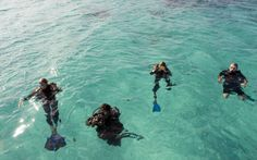 Diving from the top ten heavenly honeymoon places proud of you Vamizi! Mozambique Beaches, Honeymoon Places, Island Resort, White Sand Beach, Historical Sites, Beach Resorts, Best Hotels, Beautiful Beaches, Cool Places To Visit