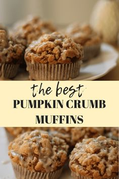 The Best Pumpkin Crumb Muffins – Christina Bee These pumpkin crumb muffins are a delicious fall time treat. This pumpkin muffin recipe is the best one I've tried. There is so much you can do with pumpkins in recipes for the fall. Paleo Pumpkin Muffins, Pumpkin Muffin Recipes, Pumpkin Chocolate Chip Muffins, Homemade Muffins, Vegan Pumpkin, Delicious Desserts, Yummy Food, Dessert Recipes, Simple Muffin Recipe