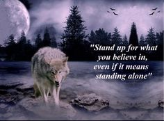 Discover and share Lone Wolf Poems And Quotes. Explore our collection of motivational and famous quotes by authors you know and love. Great Quotes, Me Quotes, Motivational Quotes, Inspirational Quotes, Simple Quotes, Wolf Spirit, My Spirit Animal, Lone Wolf Quotes, Wolf Qoutes