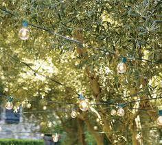 Romantic lights in a backyard tree... perfect summer evening!
