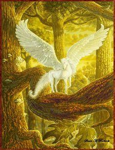 Pegasus 18