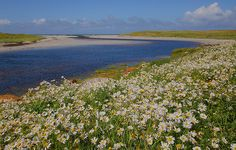 Howmore River, South Uist
