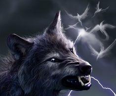 Fantasy wolf. Teenwolf