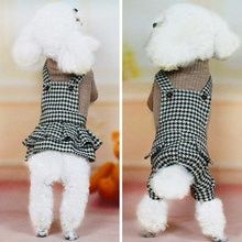Puppy Clothes, Pet Fashion, White Dogs, New Puppy, Cute Baby Animals, Pet Shop, Poodle, Fur Babies, Dog Breeds