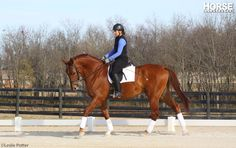 7 Under-Saddle Problems and How to Fix Them~Use a little dressage know-how to improve the fast horse, the slow horse, the stiff horse, and others.