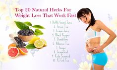We will provide you with top 20 natural herbs for weight loss that work.