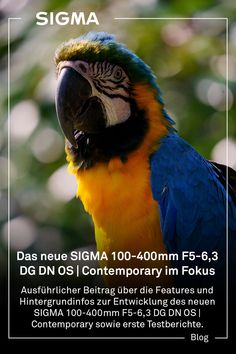 Ausführlicher Beitrag über die Features des neuen SIGMA 100-400mm F5-6,3 DG DN OS | Contemporary sowie erste Testberichte. Usb Dock, The 100, Contemporary, Animals, Pictures, Stepper Motor, Focal Length, Camera Lens, Animales