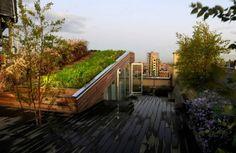 Remembering visionary landscape architect Diana Balmori throug...