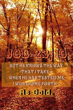 But He knows the way that I take; When He has tested me, I shall come forth as gold. [Job 23:10]