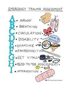 Student Nurse Study Aides