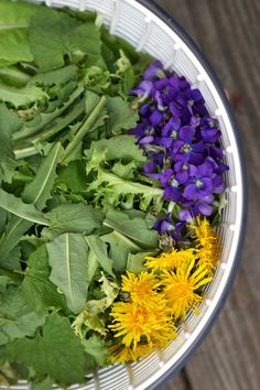 Wild Salad with garlic mustard, violet leaves & flower, dandelion greens & flowers and some homegrown lettuce