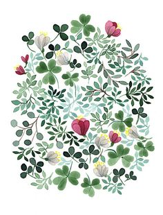 Floral illustration By Anna Emilia Laitinen Illustration Blume, Watercolor Illustration, Watercolour Painting, Watercolor Flowers, Painting & Drawing, Watercolors, Pattern Vegetal, Floral Illustrations, Botanical Art