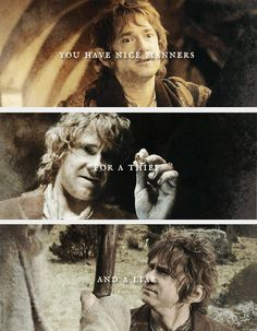 You have nice manners for a thief and a liar. #thehobbit #frodo