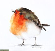Акварельные портреты птиц от Karolina Kijak