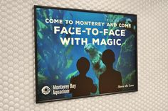 Monterey Bay Aquarium: Share the Love—BART Station Domination, 3