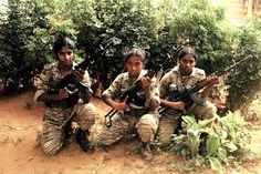 Image result for tamil tigers