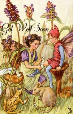 The Self-Heal Fairy. Vintage flower fairy art by Cicely Mary Barker. Taken from 'Flower Fairies of the Wayside'. Cicely Mary Barker, Fairy Pictures, Vintage Fairies, Art And Illustration, Vintage Illustrations, Beautiful Fairies, Flower Fairies, Fairy Art, Magical Creatures