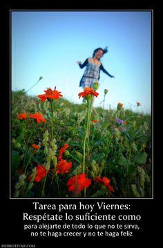 Tarea para hoy Viernes: Respétate lo suficiente como para alejarte de todo lo que no te sirva, no te haga crecer y no te haga feliz