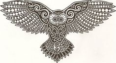 owl w/ wings spread