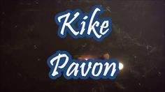 Ganas de Vivir Remix, Kike Pavon, Feat. Alex Zurdo, Manny Montes, LETRA