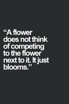 springtime wisdom