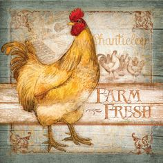 Farm Fresh Rooster