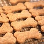 Biscotti per Cani fatti in casa, ricetta facilissima Homemade Dog Treats, Pet Treats, Dog Rooms, Dog Cookies, Dog Biscuits, Dogs Of The World, I Love Dogs, Animals And Pets, Dog Food Recipes