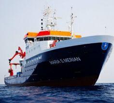 Une découverte 'géante' au large de la côte atlantique marocaine