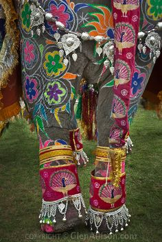 painted elephant india - Buscar con Google