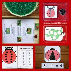 Free Ladybug Printables and Montessori-Inspired Ladybug Activities (long list of free printables plus more activities than are pictured here) http://livingmontessorinow.com/2013/07/15/montessori-monday-free-ladybug-printables-and-montessori-inspired-ladybug-activities/