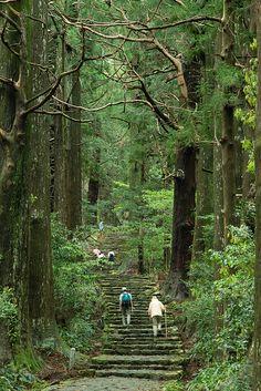 Steps to the sacred shrine, Kumano Kodo, Wakayama, Japan by ippei + janine, via Flickr