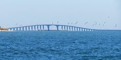 Dauphin Island, Alabama Picture: Dauphin Island bridge - Check out TripAdvisor members' 1,402 candid photos and videos of Dauphin Island