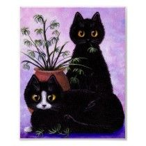 Funny Cat Poster Black Tuxedo Cats Creationarts