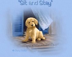 'Sit and Stay' by Penny Parker Amazing Pictures, Cute Pictures, Animal Nail Designs, Penny Parker, Boarders And Frames, Earth Angels, Finger Painting, Graphic Design Illustration, Beautiful Paintings