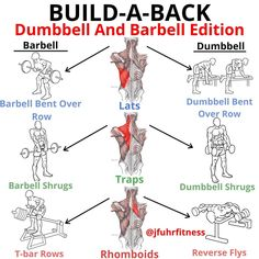 Best Upper Back Exercises. Back Workout Men, Gym Workouts For Men, Volleyball Workouts, Gym Tips, Weight Training Workouts, Dumbbell Workout, Lat Workout, Dumbbell Exercises, Men Exercise