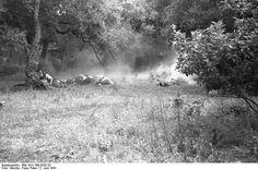 Fallschirmjäger.net - Kondomari Massacre