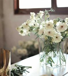 simple flowers in recycled jars Simple Flowers, Pretty Flowers, Recycled Jars, Plant Images, Eucalyptus, Wedding Decorations, Table Decorations, Wedding Ideas, Indoor Flowers