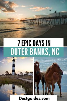 Usa Travel Guide, Travel Usa, Travel Guides, Travel Tips, Travel Destinations, Outer Banks Nc, Outer Banks Vacation, Vacation Trips, Vacation Spots