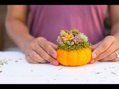 There's no better way to get in the fall spirit than by creating a succulent topped pumpkin. Check out our Succulent Topped Pumpkin diy tutorial. Diy Pumpkin, Succulents Diy, Diy Tutorial, Vet, Thanksgiving, Create, Holiday Decor, Plants, How To Make