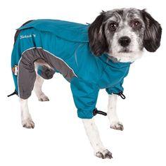 Pet Dogs, Dog Cat, Pets, Protective Dogs, Rainbow Dog, Dog Boots, Dog Jacket, Rain Jacket, Blue Dog