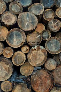 Mural wood logs 158206 behang Brooklyn Bridge Esta Home