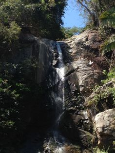 Yelapa Waterfall, Yelapa Mexico, White butterfly, #yelapa, #waterfall, #butterflies, #yelapamexico,