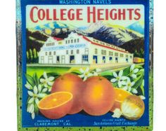 Handmade Coaster College Heights - Vintage Citrus Crate Label - Handmade Recycled Tile Coaster