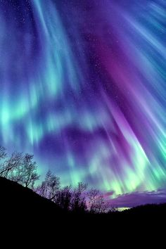 A sky full of aurora | chillwall.com