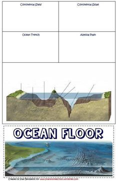 Geologic Landforms The Ocean Floor Chssociology Hunter Start Page