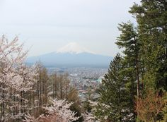 富士山。4月。