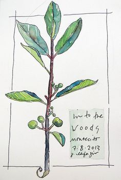 from my sketchbook by janelafazio, via Flickr