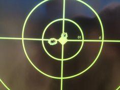 gun essay