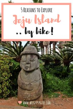 Jeju Island, with its wide coastal roads and stunning tropical landscapes is one of the best places to cycle in Korea. Here's why you should go!