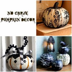 no carve pumpkins